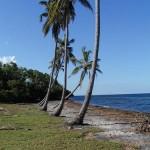 Playa Bibijagua: un encanto en el Mar Caribe